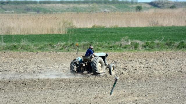 Nedimović: Stranci će moći da kupe dva hektara zemlje u Srbiji