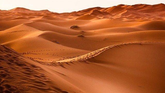 REZULTATI DVADESETOGODIŠNJEG ISTRAŽIVANJA: Pustinja Sahara bila močvara prepuna najstrahovitijih dinosaurusa